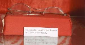 Glasses used by Luisa and its case